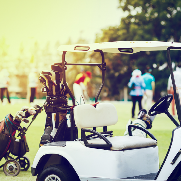 Batteries for Golf Carts and Caddies